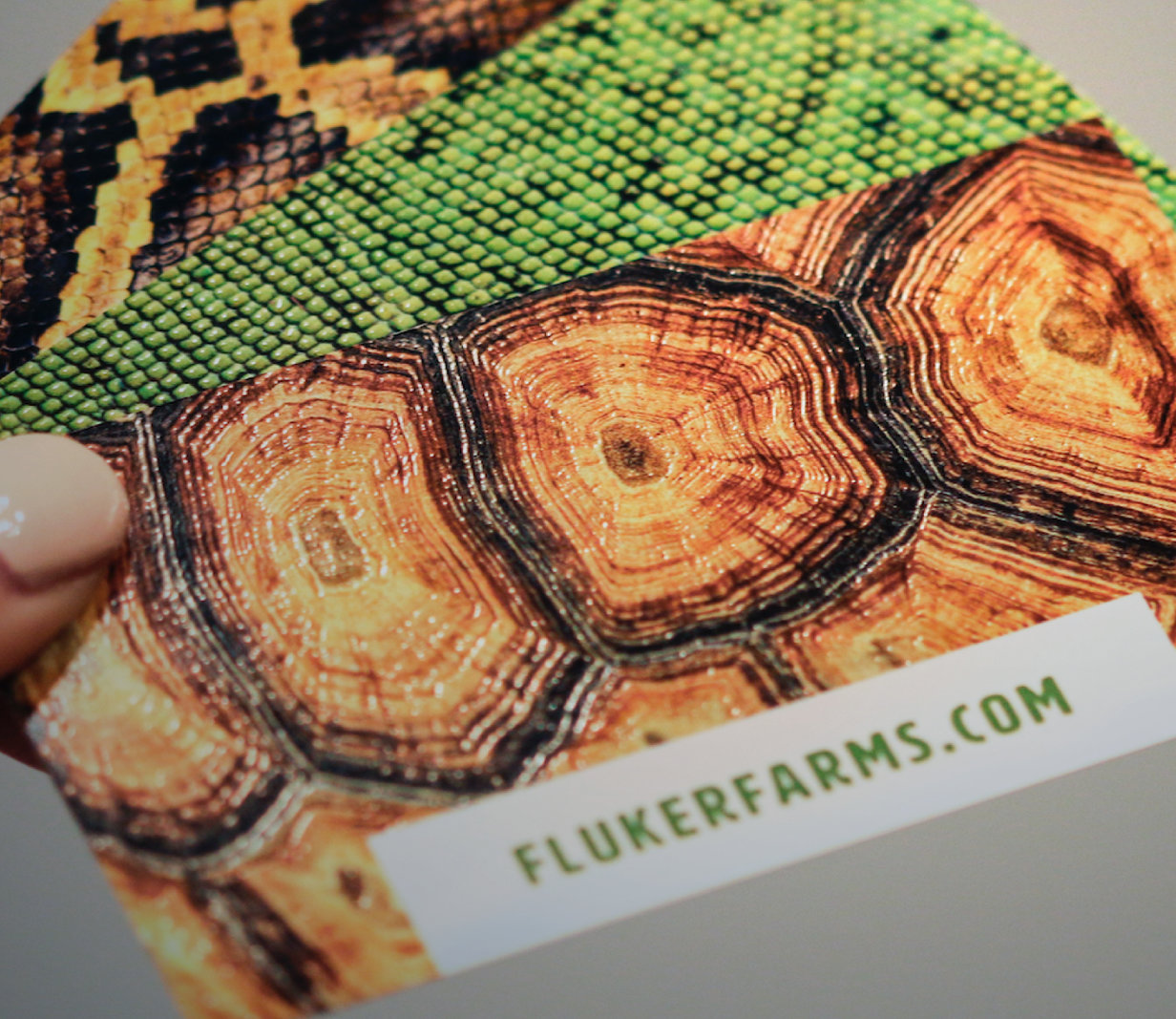 Fluker Farms Corporate Identity