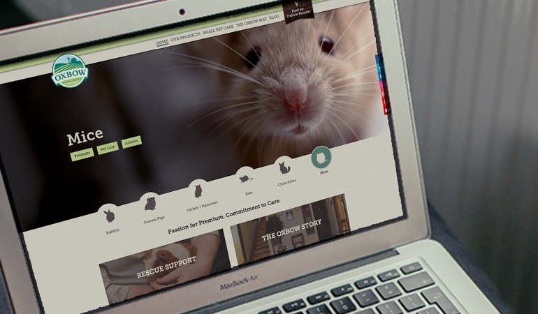 Oxbow Animal Health Website Design - Xdesign Baton Rouge