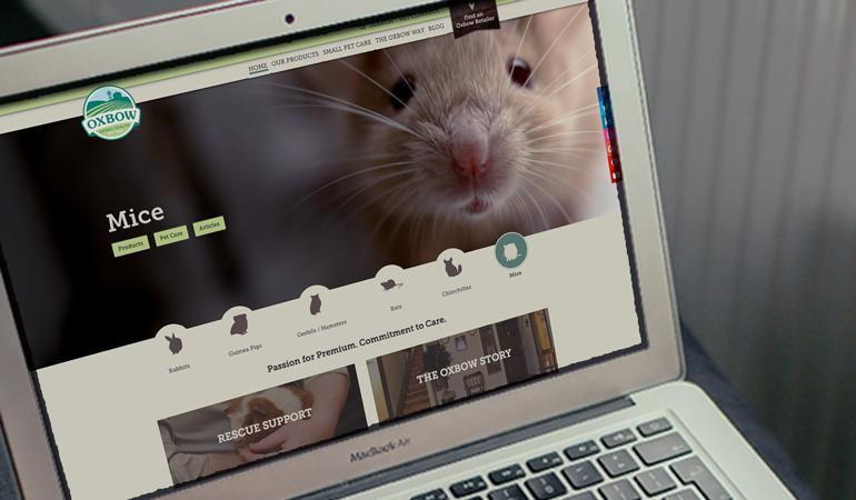 Oxbow Animal Health Website Design - Xdesign Baton Rouge